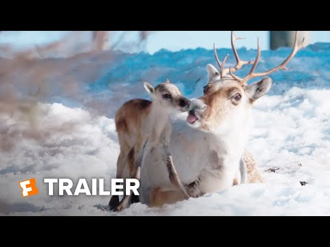 A Reindeer's Journey Trailer #1 (2019) | Movieclips Indie